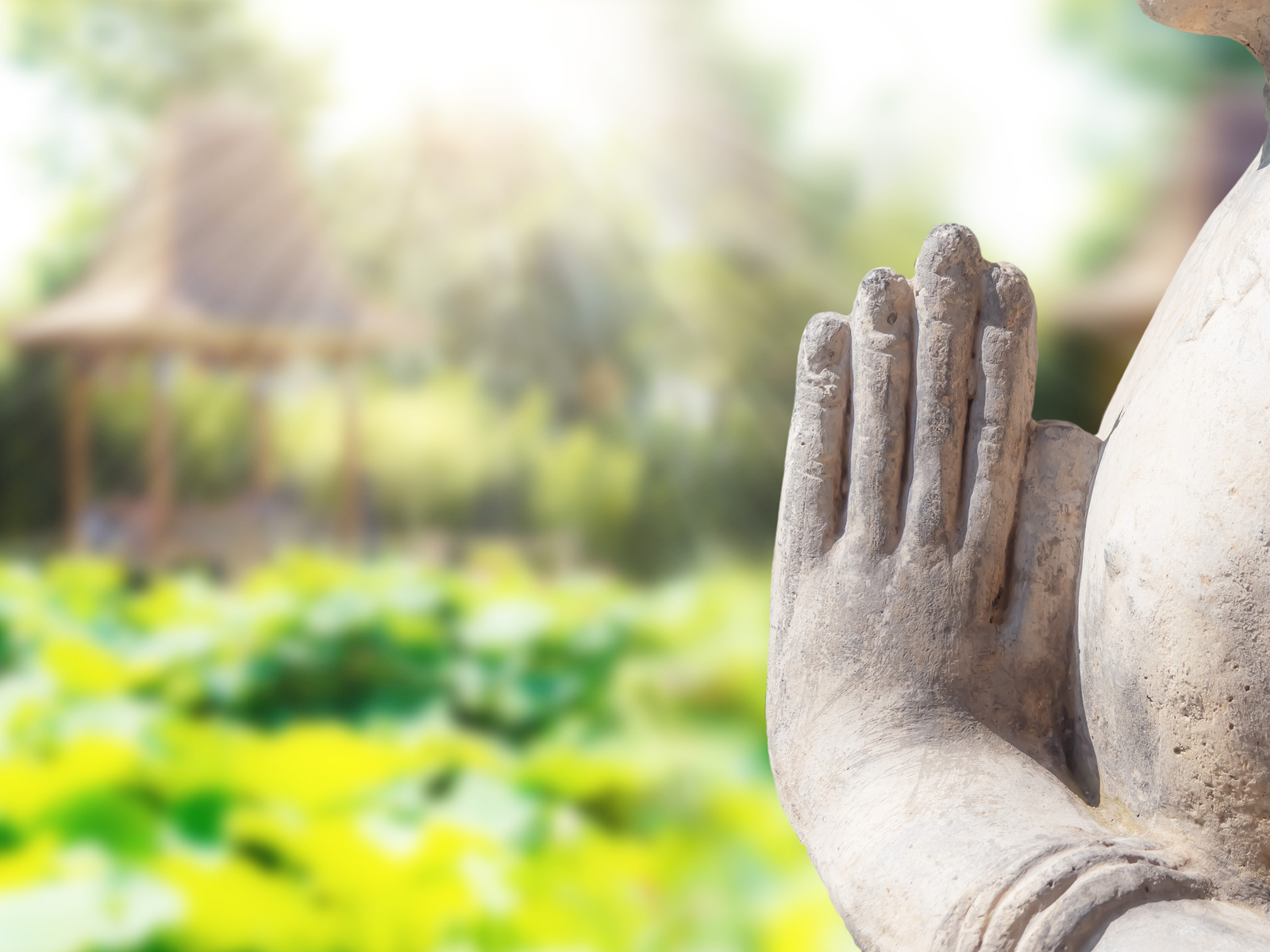 Hand gestures of prayer.The Power of Prayer & Meditation by Buddha on background of azian garden. Concept of meditation and prayer.