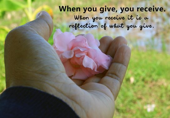 Inspirational quote - When you give, your receive. When you receive it is a reflection of what you give. With woman holding pink flower in hand on green fresh paddy field background.